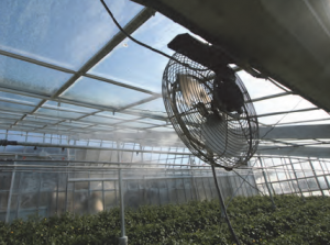 kertészet01