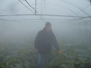 kertészet02